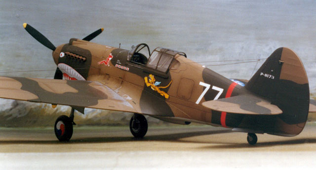 model kit of the P-40