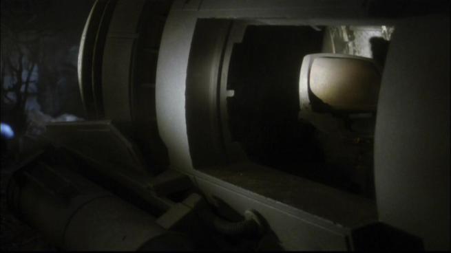 Xindi Arboreal shuttle, Extinction (6)